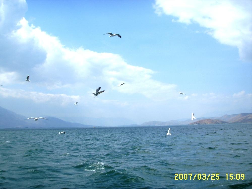 洱海风景区图片