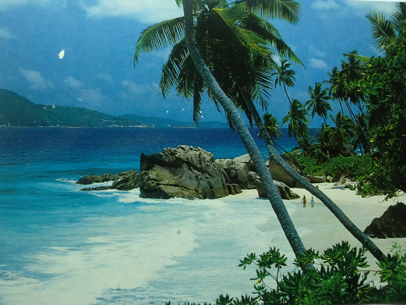 塞舌尔 马埃岛 smart choose coral strand 珊瑚酒店7