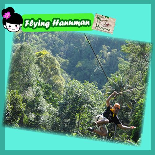 【泰国普吉岛探险】热带雨林丛林飞索 丛林飞跃 flying hanuman