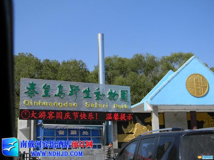 秦皇岛野生动物园_北戴河野生动物园