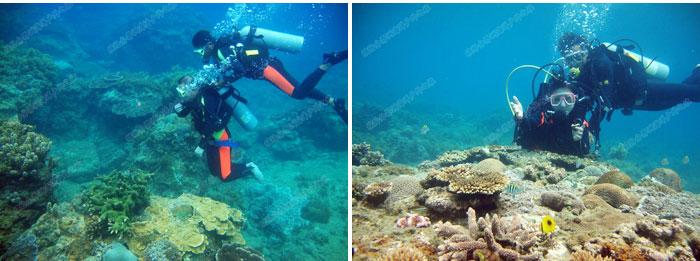 旅游/三亚自由行/分界洲岛景区门票/预定水上项目