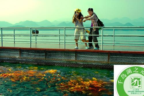月光岛——观鱼池 月光岛——百鸟园 航拍千岛湖