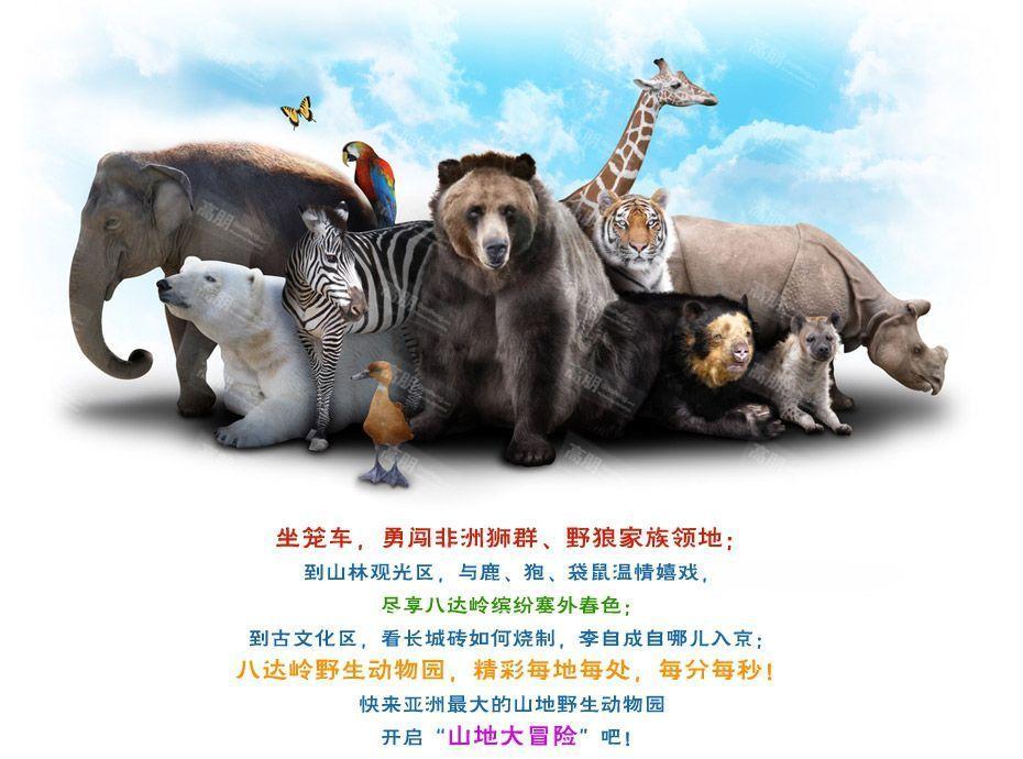 八达岭野生动物园——电子票