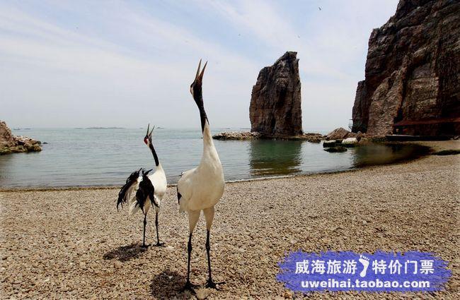 王国/西霞口海驴岛风景区