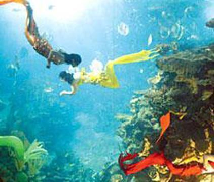 广州海洋馆门票 包广州动物园