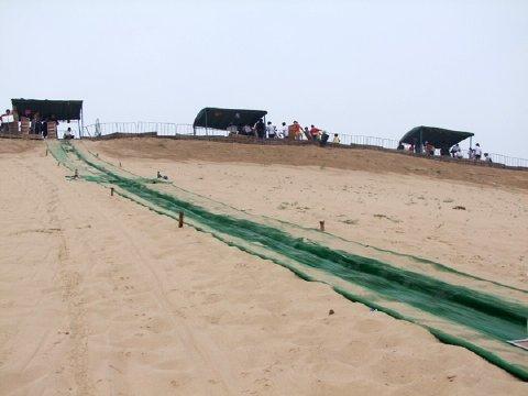 河北旅游 秦皇岛景点 国际滑沙活动中心门票预订 特惠票30元起