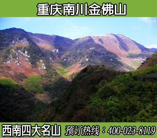 重庆南川金佛山景区门票+索道全程(旺季)
