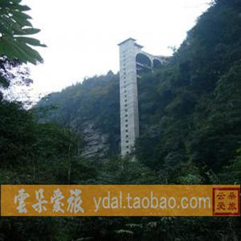 四川旅游 成都雅安碧峰峡优惠门票预订 风景区 熊猫基地高清图片