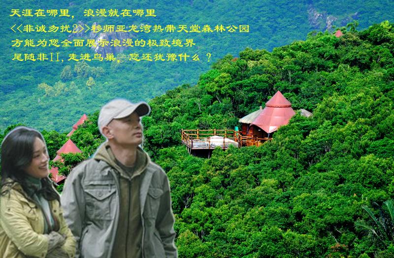 三亚鸟巢/三亚亚龙湾热带天堂森林公园门票