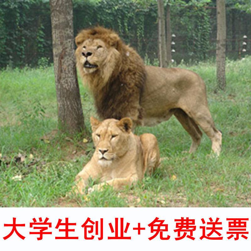 秦皇岛野生动物园 秦皇岛动物园
