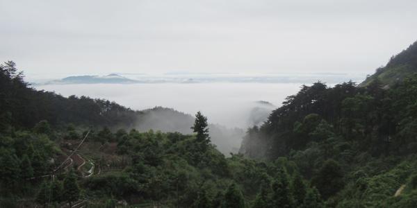 乐约乡风景