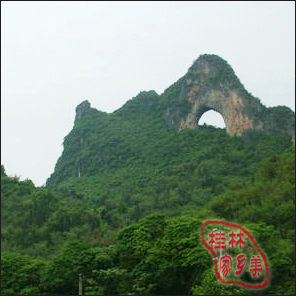 桂林旅游自助游 阳朔景点门票 十里画廊图片
