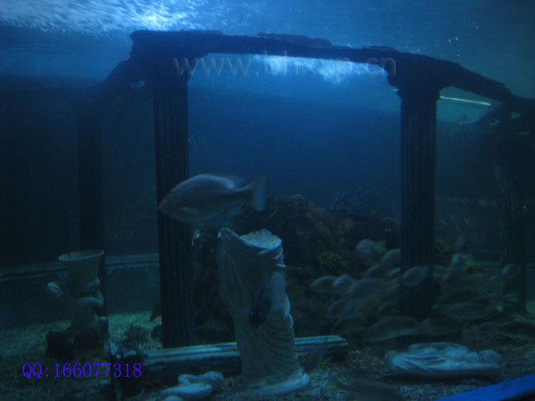 海底世界的海底遂道比较长,还有里面的海洋生物比较多.