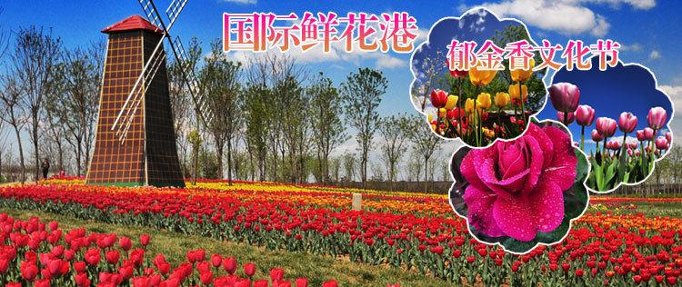 北京文化旅游景点_