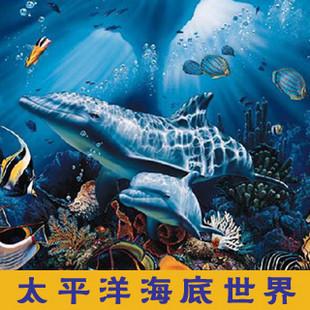 北京太平洋海底世界门票包含动物表演或动感影院通票成人票,儿童