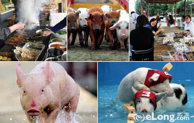 霞客岛亲子乐园门票+小猪运动会项目观看门票+烧烤()