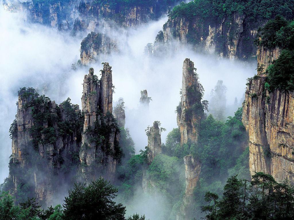 张家界国家森林公园 景点门票信息